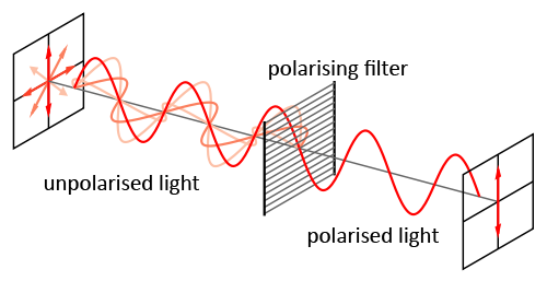 Polarised-light